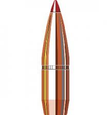P 308 165GR HORNADY SST (100)
